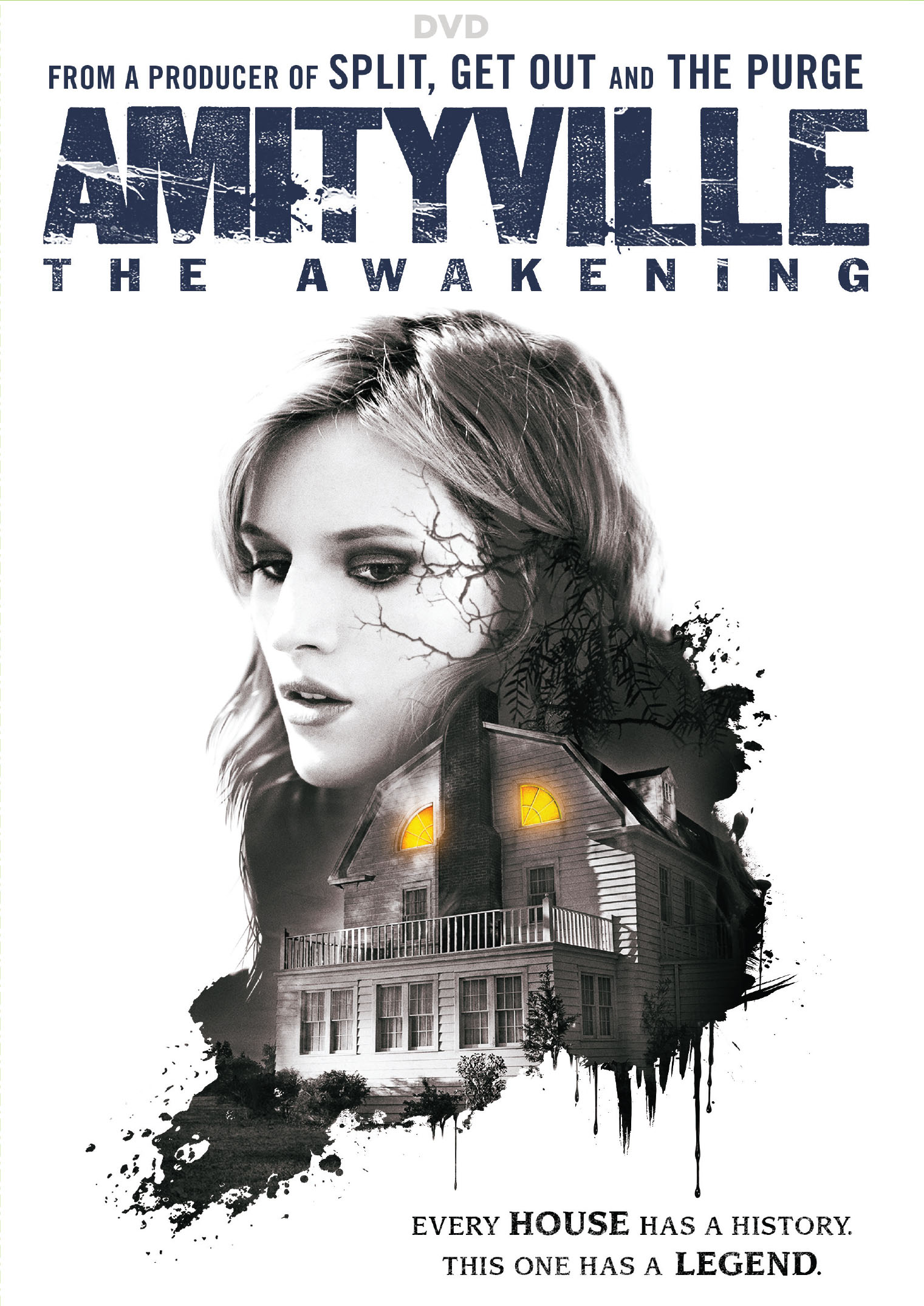 Amityville: Awakening